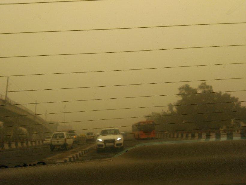delhi4.jpg